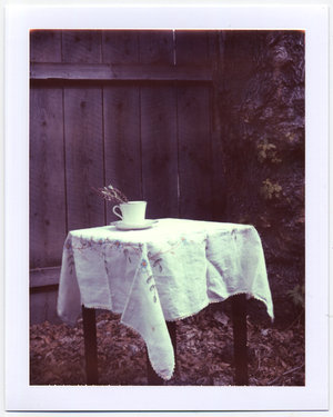 Teacup_Polaroid_by_silversmith